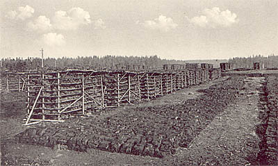 Peatbogs drying on  Šumava, historic photography