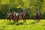 Agrotourism and Horse-riding