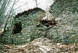Castle Velešín, remains of walls